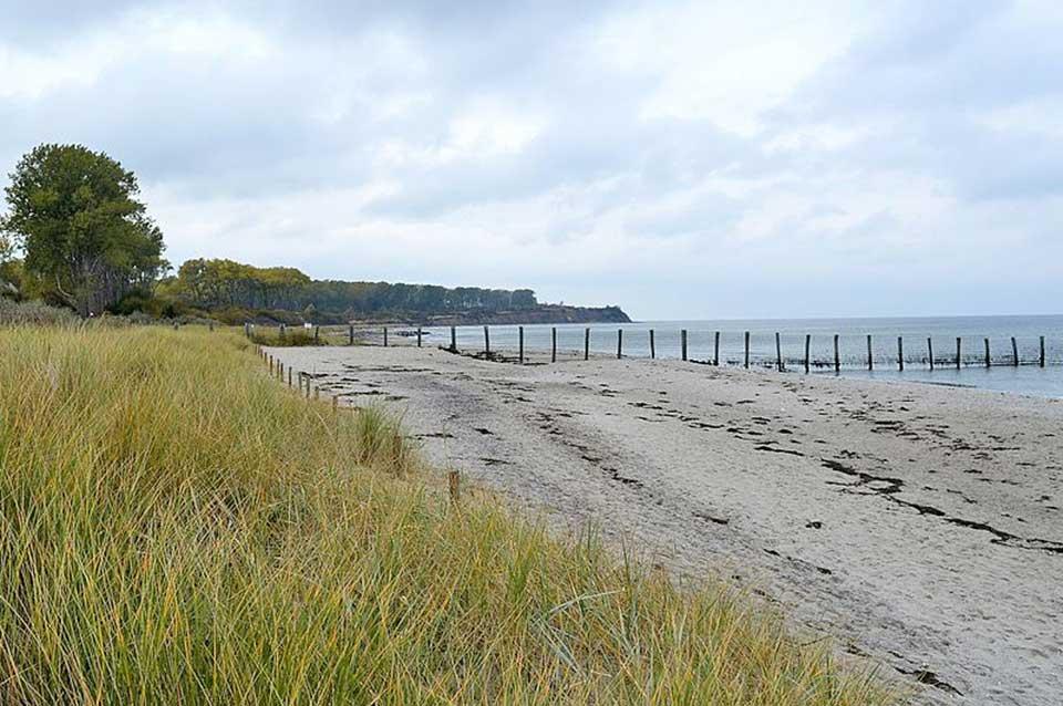 Naturschutzgebiet auf der Halbinsel Wustrow
