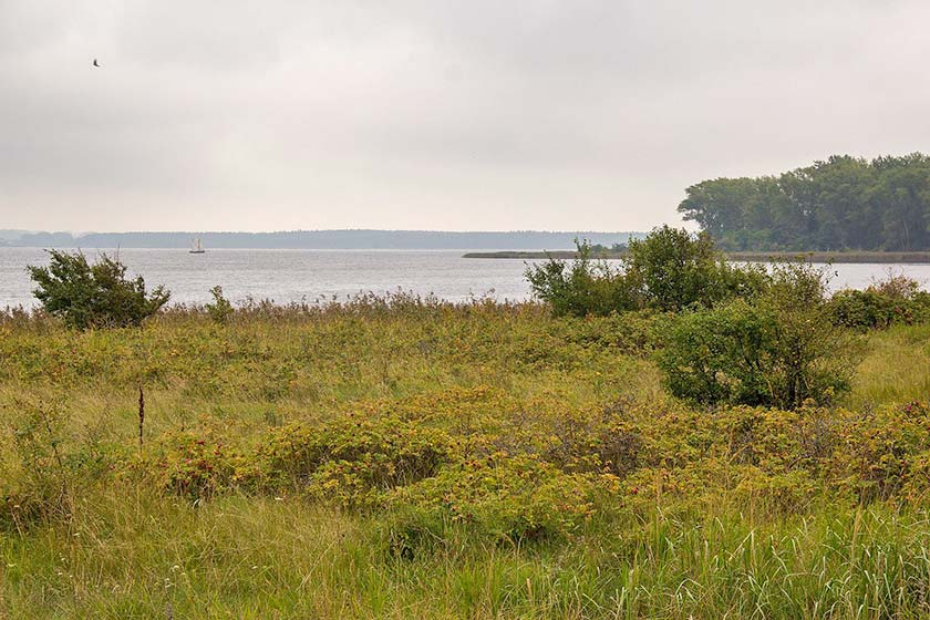 Halbinsel Wustrow - Besichtigungen und Führungen